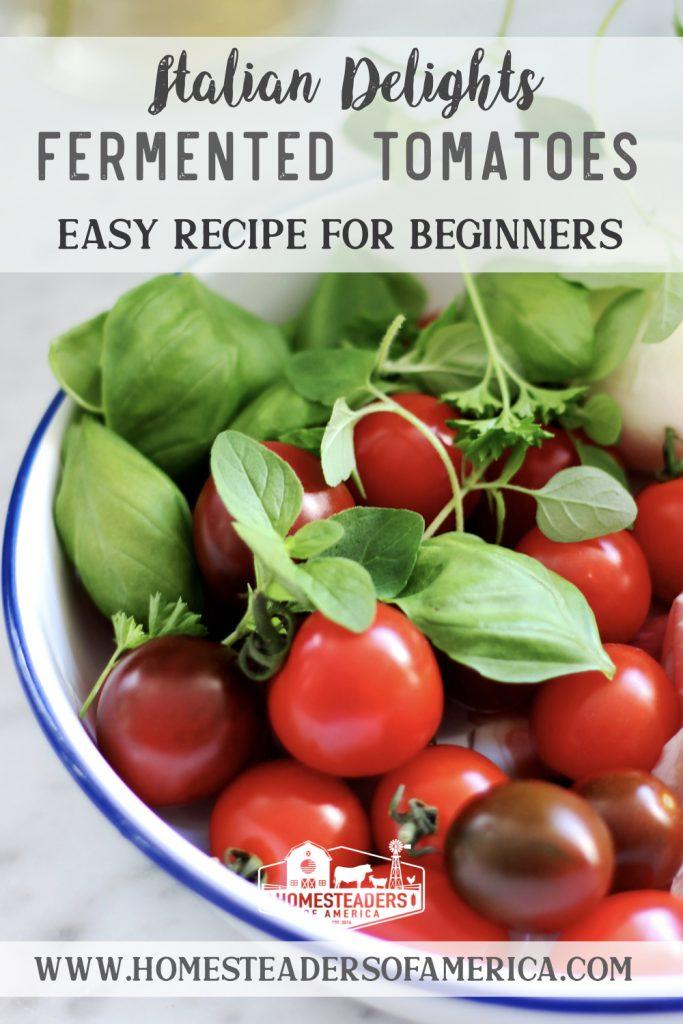 Italian Delights- Fermented Tomatoes Recipe