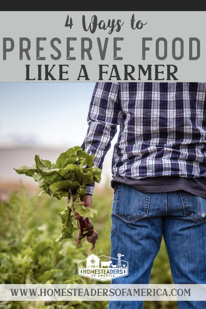 4 Ways to Preserve Food Like a Farmer