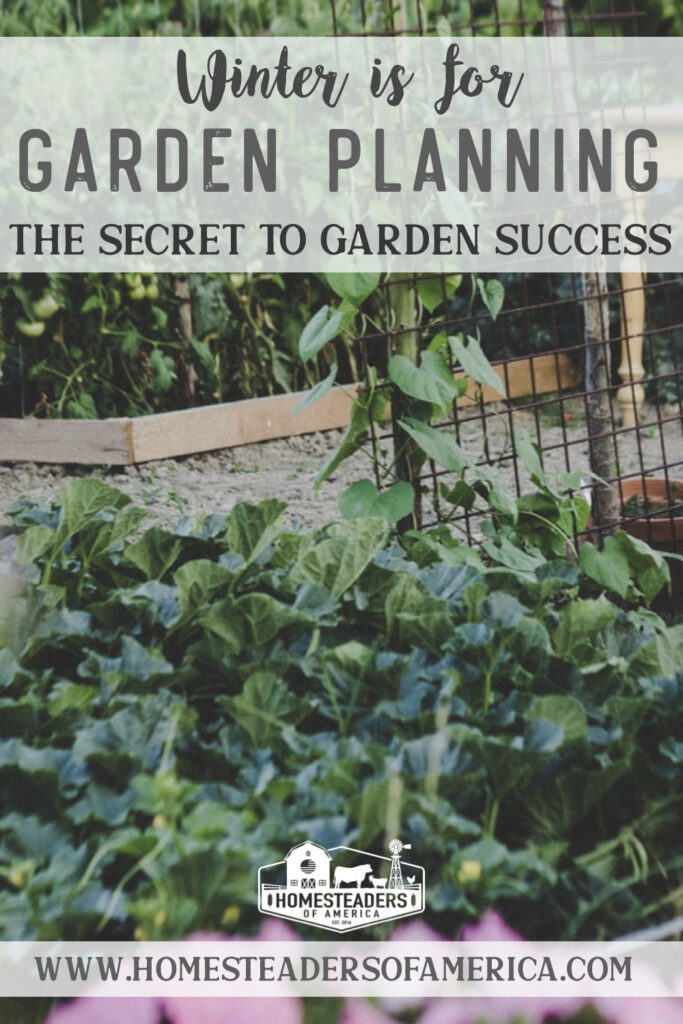 Winter Garden Planning: The Secret to Garden Success