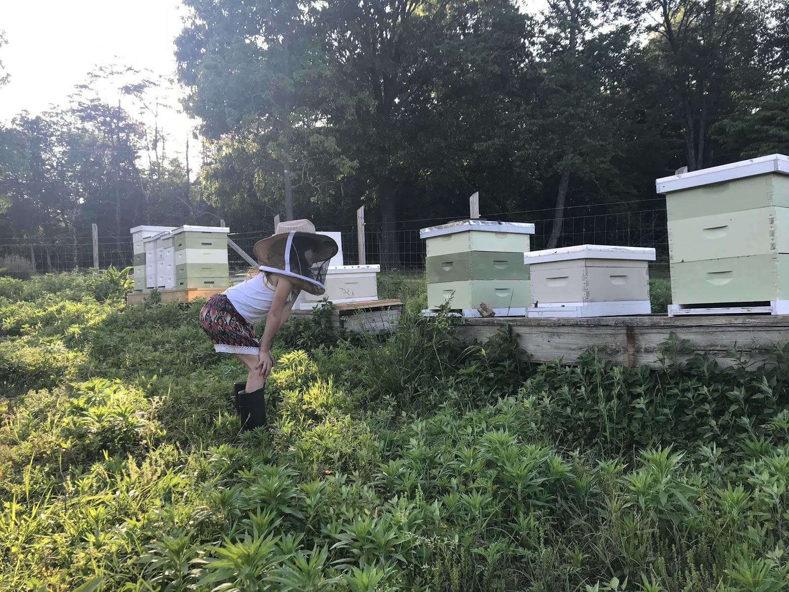 Ella in her Bee Kingdom