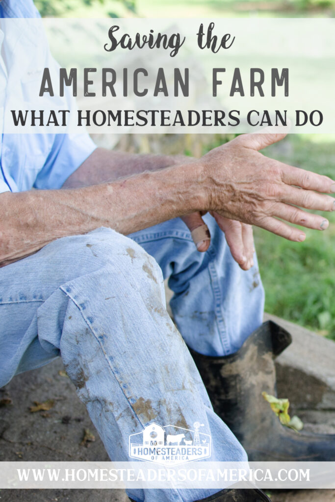How Homesteaders Can Save the American Farm