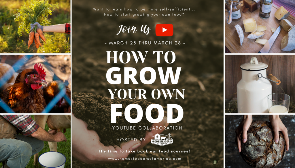 How to Grow Your Own Food Series