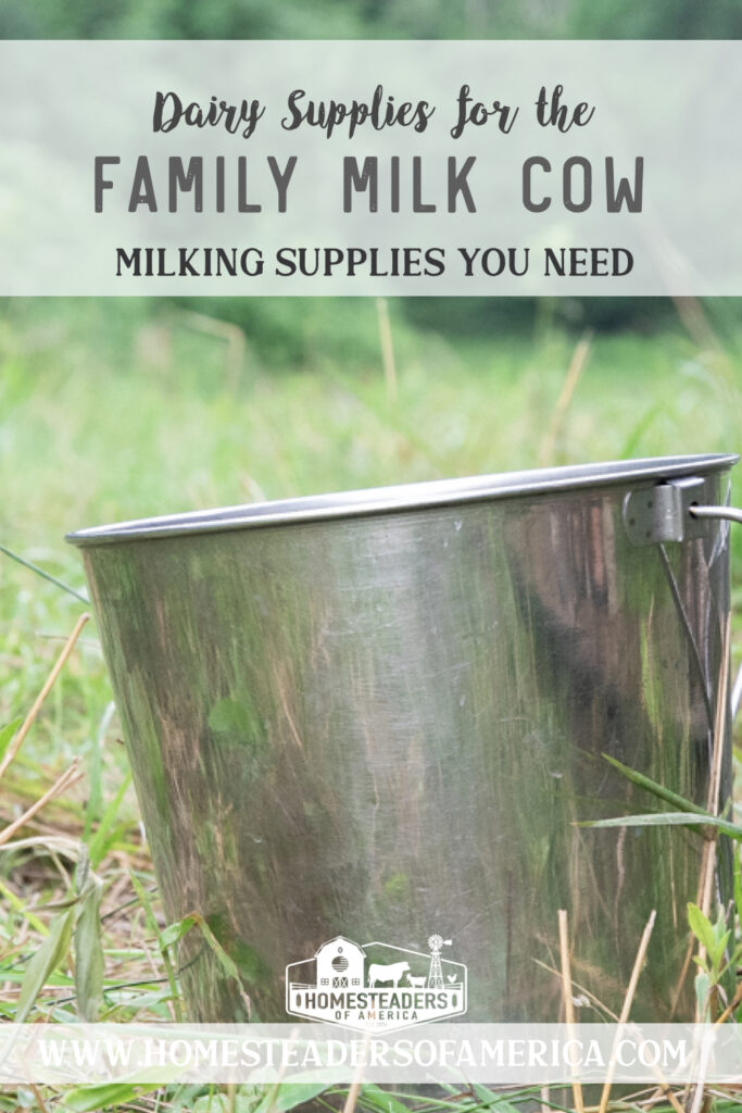 So you're thinking about bringing home a family milk cow? Check out this list of dairy supplies so you have the milking equipment you need to get started! #homestead #homesteading #familymilkcow #rawmilk #homedairy #dairy #milkcow #cow