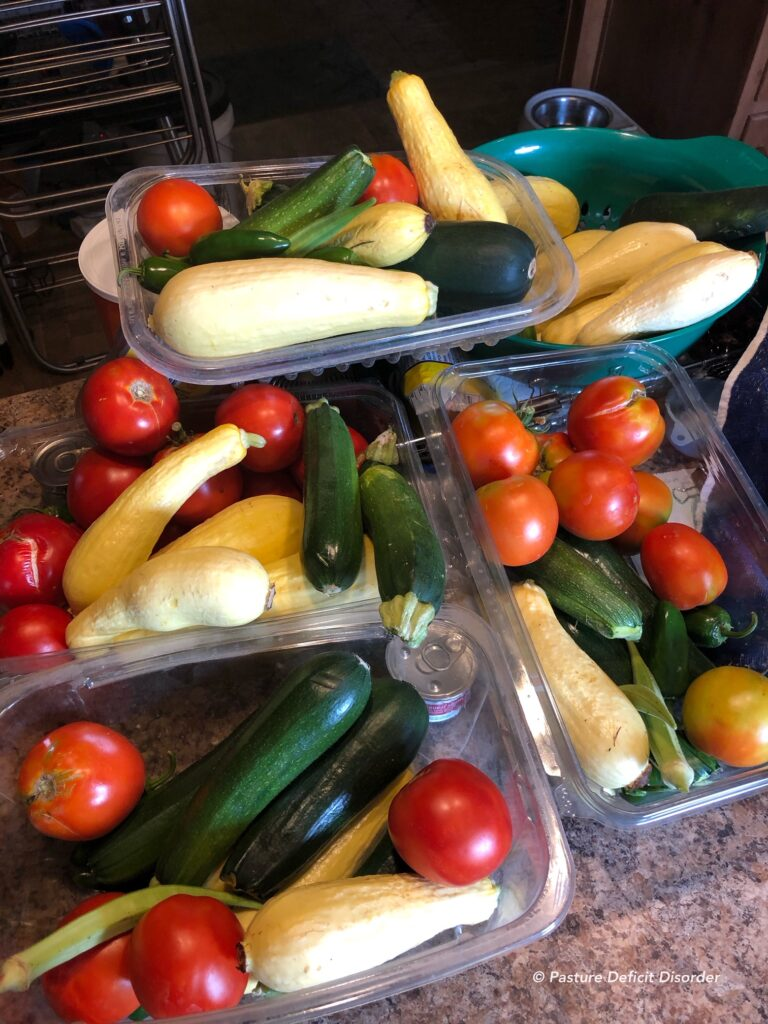 Harvest from our small garden