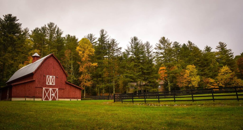 What is a Homesteader?