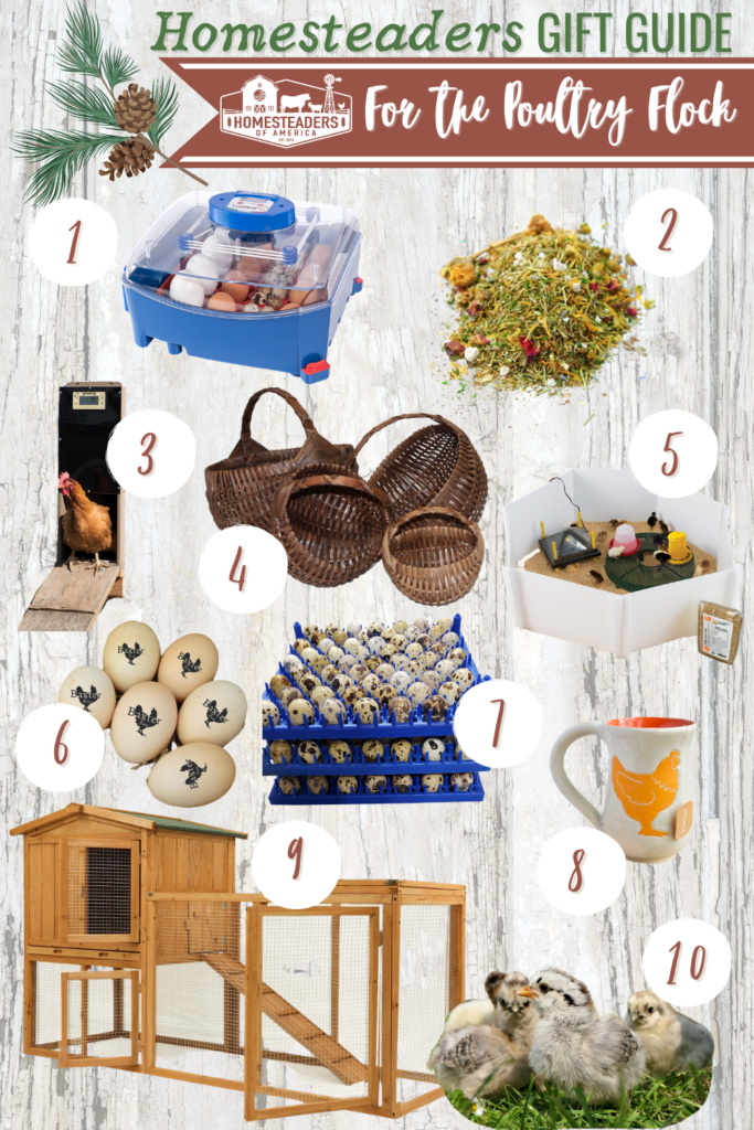 Gifts for Homesteaders (Chickens & Poultry)