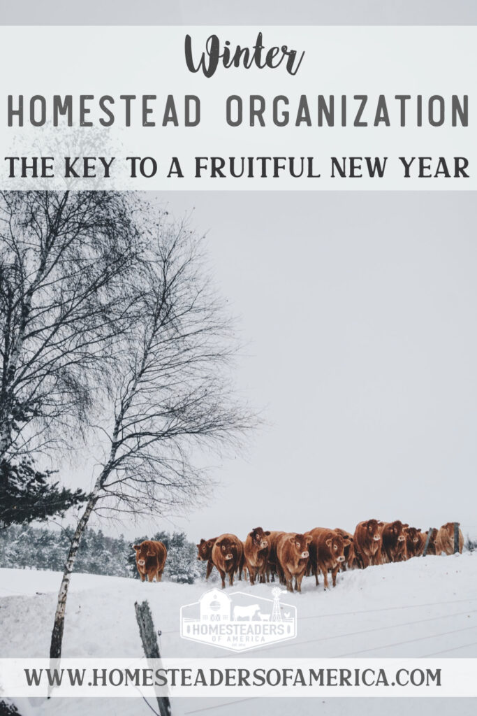 Winter Homestead Organization Tips: The Key to a Fruitful New Year