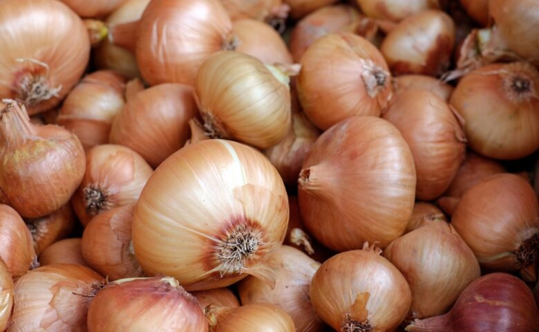 How to Grow Onions from Seed