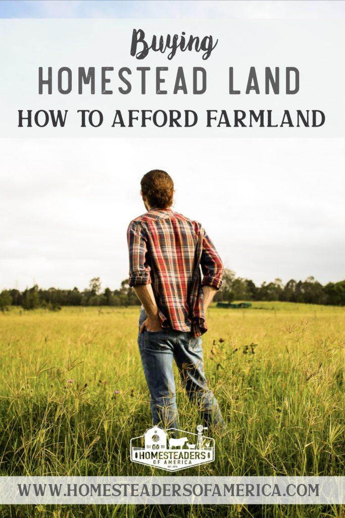 Buying Homestead Farm Land