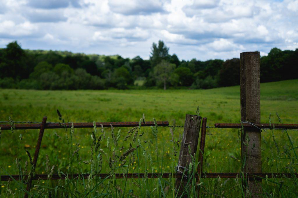 Buying Homestead Land